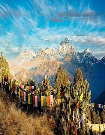 Ghorepani Poon Hill Trek (8 days)
